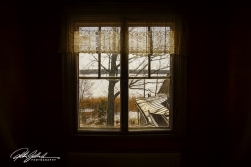 Winter (24 of 100)