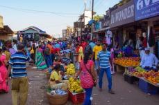 Maposa , Goa (33)-20