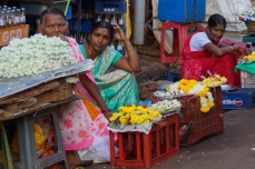 Maposa , Goa (43)-32