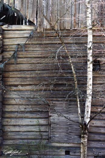 at the old barn-2