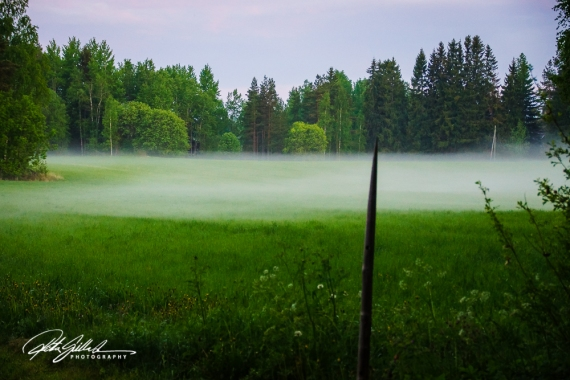 misty summer eve-10