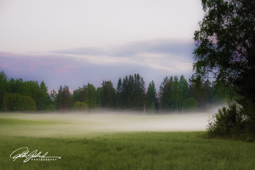misty summer eve-25