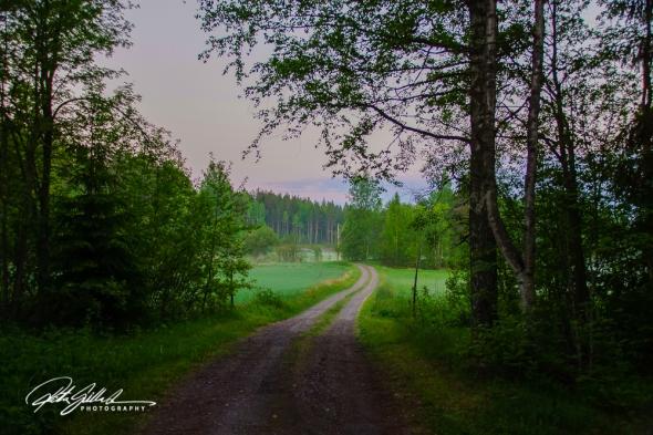 misty summer eve-26