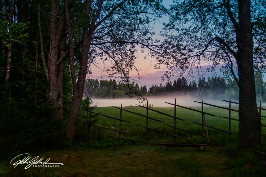 misty summer eve