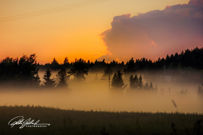 sunset and mist-04351