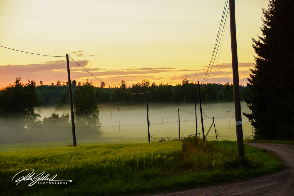 sunset and mist-04369