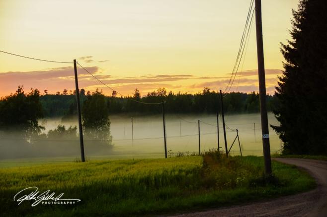 sunset and mist-04369