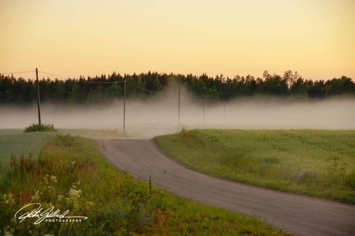 sunset and mist-04371