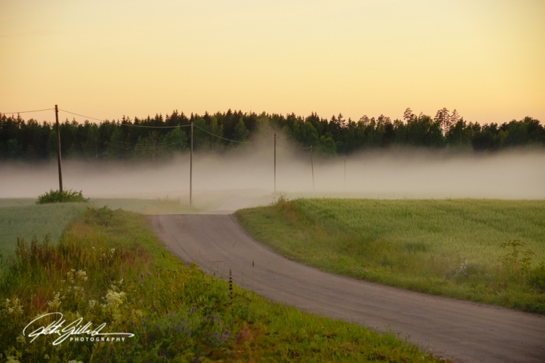 sunset and mist-04371