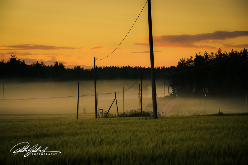 sunset and mist-04374