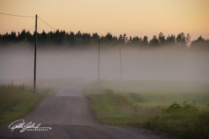 sunset and mist-04406
