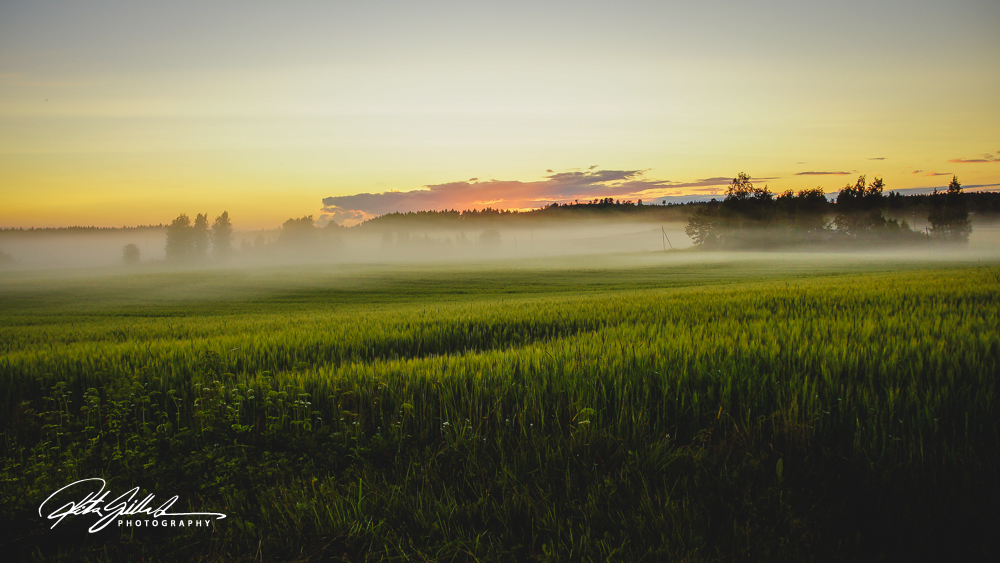 sunset and mist-04434