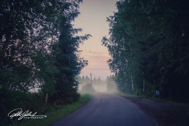 sunset and mist-04475