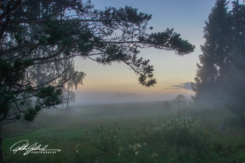 sunset and mist-04495