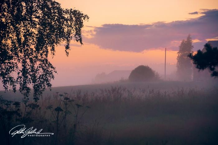 sunset and mist-04500