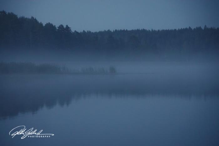 sunset and mist-04613