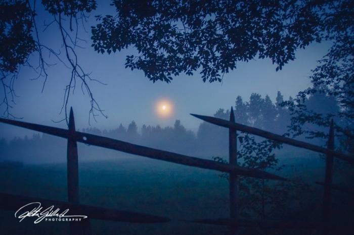 sunset and mist-04639