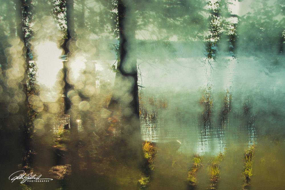 Autumn17-243