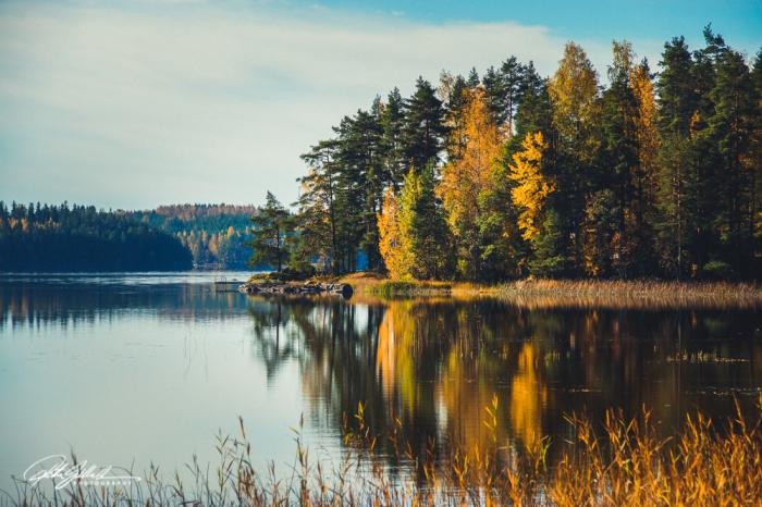 fall light-07016