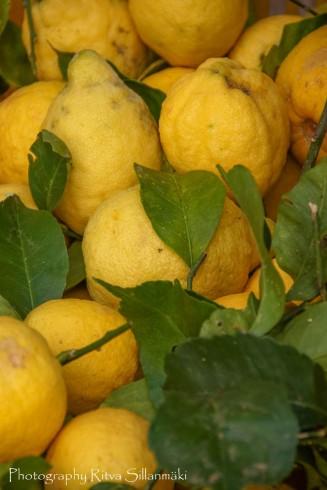 Fruits and Vegetables-1 – kopio