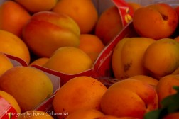 Fruits and Vegetables-4 – kopio