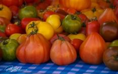 tomatos – kopio
