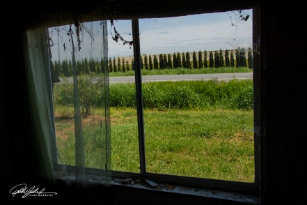 abandoned house--21