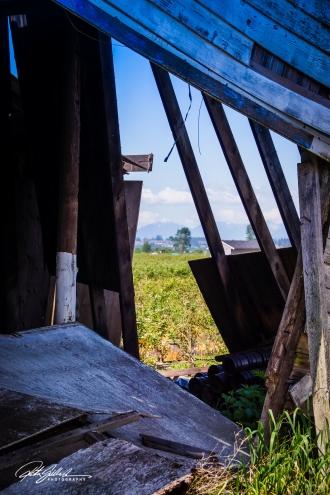 abandoned house--26