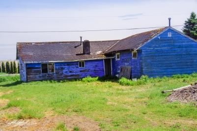 abandoned house--30