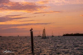 Key West, Florida-11