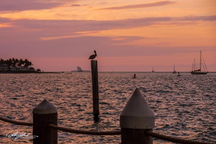Key West, Florida-9