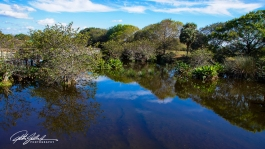 Wakodahatchee Wetland (7 of 154)