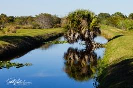 Wakodahatchee Wetland (92 of 154)