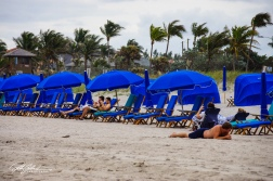Florida shots (68 of 2035)