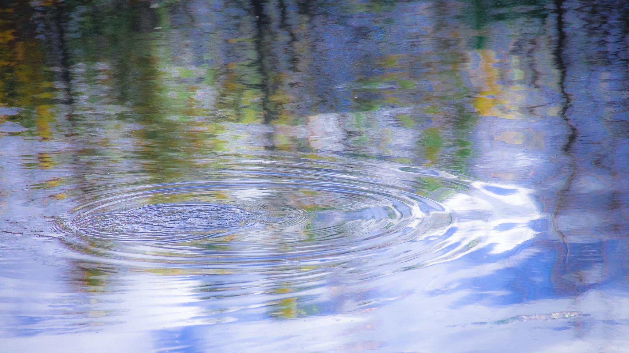 Soft ripples (1 of 1)