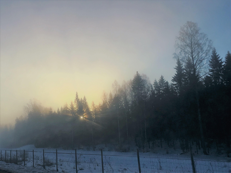 Sunrise in April
