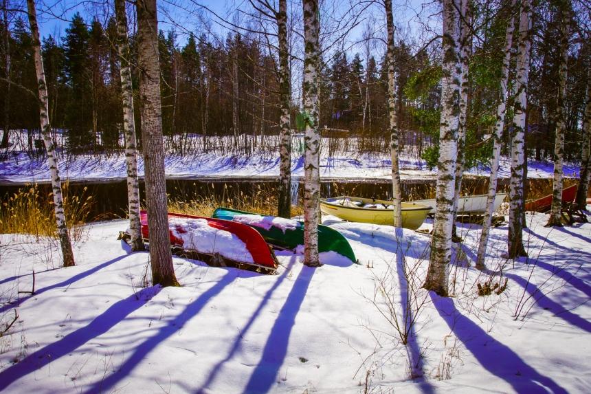 Winter landscape (21 of 100)