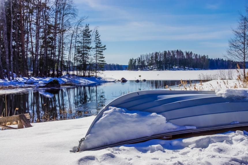 Winter landscape (30 of 100)