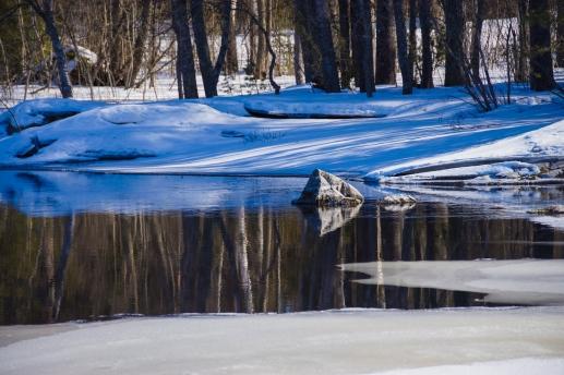 Winter landscape (43 of 100)