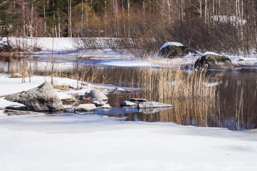 Winter landscape (45 of 100)