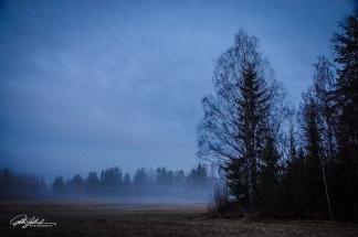 Misty evening (73 of 88)