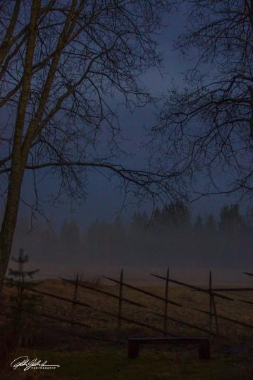 Misty evening (88 of 88)