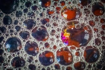 Bubbles 10-10 (5 of 21)