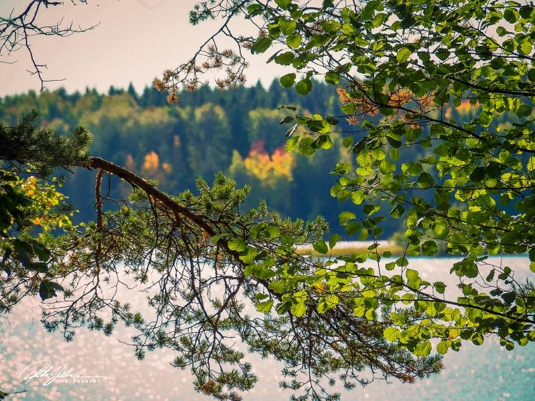 autumn in Lahti (117 of 237).jpg