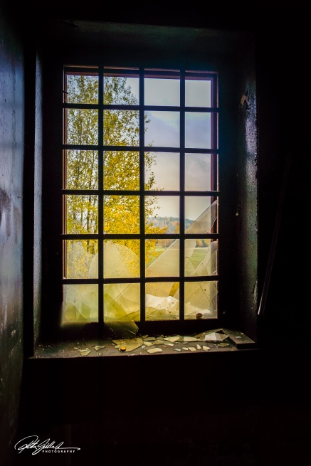 window vivid (1 of 1)