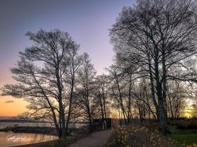 Winter sunset (2 of 3)