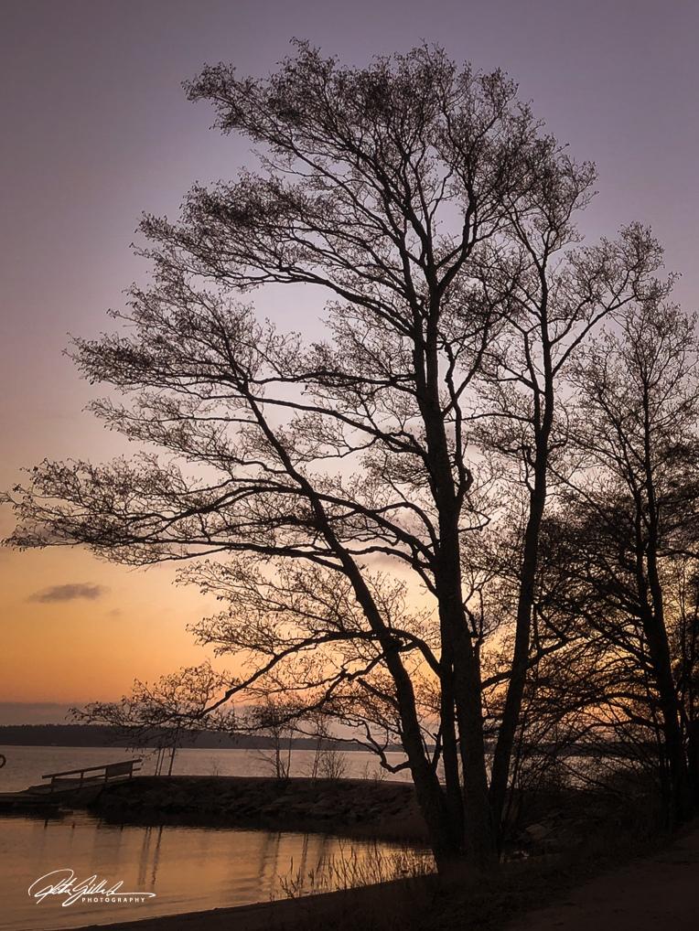 Winter sunset (3 of 3)