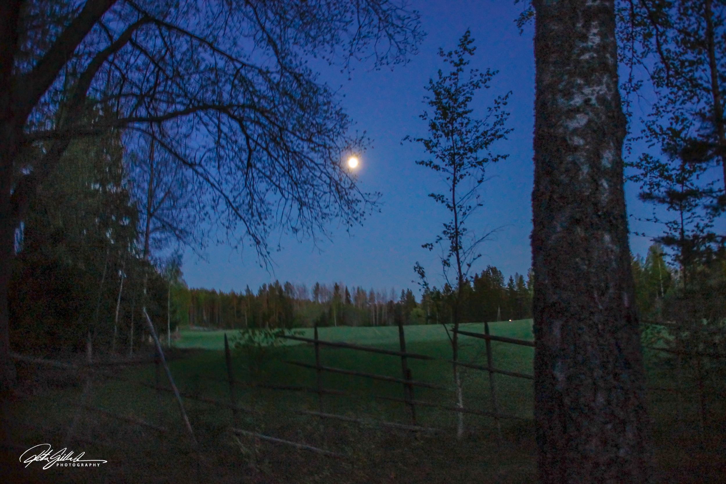 Blue moon of May