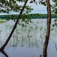 Lake Humaljärvi