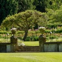 CFFC - Gardens